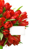 Red tulips with white paper card — Stock Photo