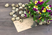 Pansy flowers, easter eggs and greeting card — Stock Photo