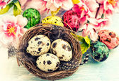 Easter decoration with flowers and eggs — Stock Photo