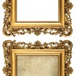 Baroque style golden picture frame empty and with canvas — Stock Photo #46075229