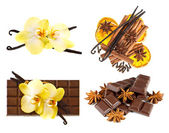 Vanilla pods and orchid flower. chocolate and spices — Stock Photo