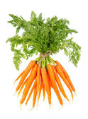 Fresh carrots with green tops isolated on white — Stock Photo