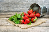 Fresh strawberries with green mint leaves — Stock Photo