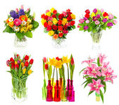 Beautiful bouquet of colorful flowers over white — Stock Photo