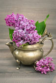 Lilac flowers in antique vase — Stock Photo