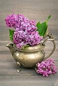 Lila Blumen in antike vase — Stockfoto