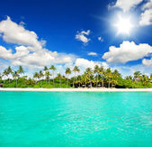 Beach with green palm trees and sunny blue sky — Stock Photo
