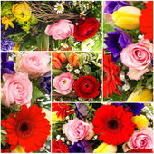 Bouquet of colorful spring flowers. collage — Stock Photo