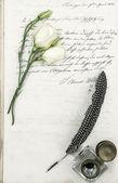 Vieja carta, flor y antiguo pluma pluma — Foto de Stock