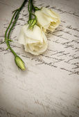 Old handwritten love letter and white flowers — Стоковое фото
