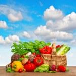 Shopping basket with organic food ingredients — Stock Photo #49568033