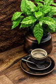 Black coffee and fresh coffee plant on wooden table — Stock Photo
