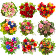 Nine colorful flowers bouquet on white — Stock Photo #50326621