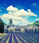 Abbaye de sénanque avec champ de lavande, point de repère de la provence, vauclu — Photo