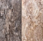 Abstract natural stone background — Stock Photo