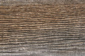 Texture of the old wood — Stock Photo