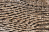 Old wood background textures — Stock Photo