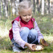 Little girl gathers mushrooms in forest — Stock Photo #12883364