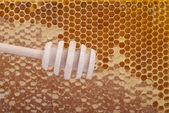 Wooden spoon for honey on honeycomb — Stock Photo