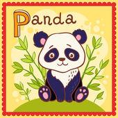 Alfabetos ilustrados letra p y panda. — Vector de stock