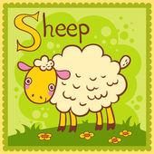 図解アルファベット手紙 s と羊. — ストックベクタ