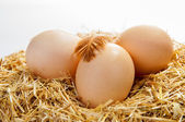 Natural village eggs — Stock Photo