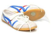 Women's Running Shoes — Stock Photo