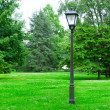 Stock Photo: Flashlight to illuminate park