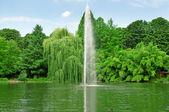在湖的中心喷泉 — 图库照片