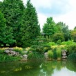 Scenic lake in summer park — Stock Photo #19763659
