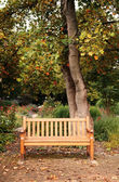 Beautiful bench — Stock Photo
