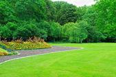 Sommarträdgård med gräsmatta och blomma trädgård — Stockfoto