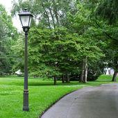 Park aydınlatmak için el feneri — Stok fotoğraf