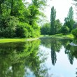 Stock Photo: Scenic lake in summer park
