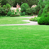 Summer park with beautiful green lawns — Stock Photo