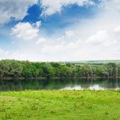 Prado e floresta na margem do rio — Foto Stock
