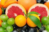 Fruit set — Stock Photo