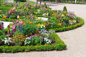 Delightful flower bed in the summer park — Stock Photo