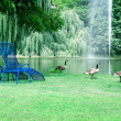 Stock Photo: Park with picturesque lake and recreation areas