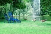 Park s malebné jezero a rekreační oblasti — Stock fotografie
