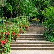 Stock Photo: Staircase in cozy park