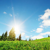 Sunrise in the mountains in summer — Stock Photo