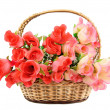Stock Photo: Basket with flowers
