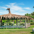 Outdoor pavilion, lawn and palm trees — Stock Photo