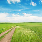 Wheat field,country road and blue sky — Stock Photo