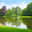 Scenic lake in the summer park — Stock Photo