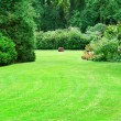 Beautiful summer garden with large green lawns — Stock Photo