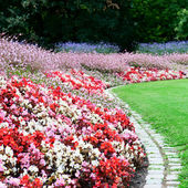 Bright flower bed and green grass in the summer park — Stock Photo