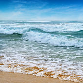 Seascape, sand beach and blue sky — Photo