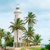 Lighthouse and palm trees in the town of Galle, Sri Lanka — Stock Photo